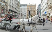 Online kurz němčiny - Jazykový kurz v Rakousku