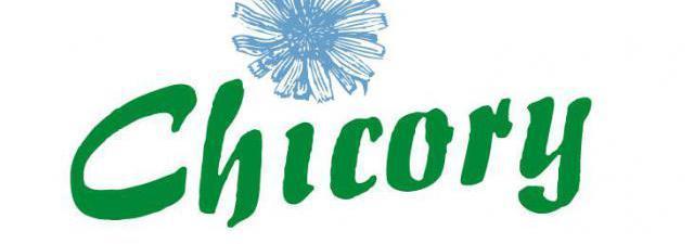Překladatelská agentura Chicory s.r.o. Brno-střed