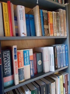Bez dobrého slovníku se neobejde žádný překladatel