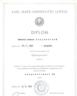 VŠ_diplom